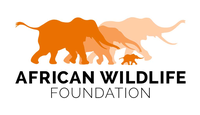 African Wildlife Foundation ( AWF)