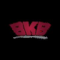 BKB SA