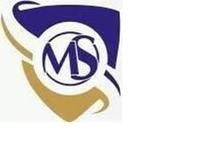 MELICITY SECURITY logo