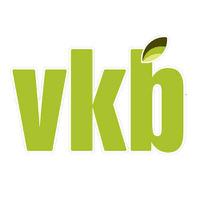 VKB Group