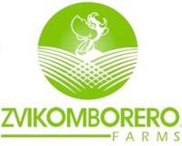 Zvikomborero farms